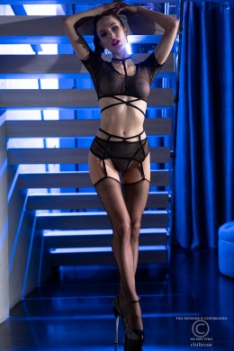 Set 4 pieces on the mesh. Tops, suspenders, thong and stockings.