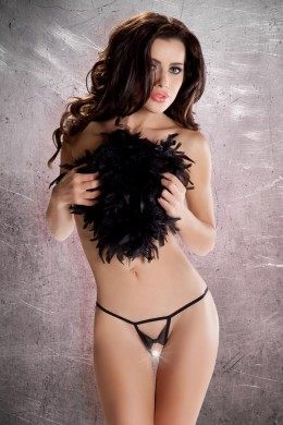 Passion: micro thong open with bow. Black